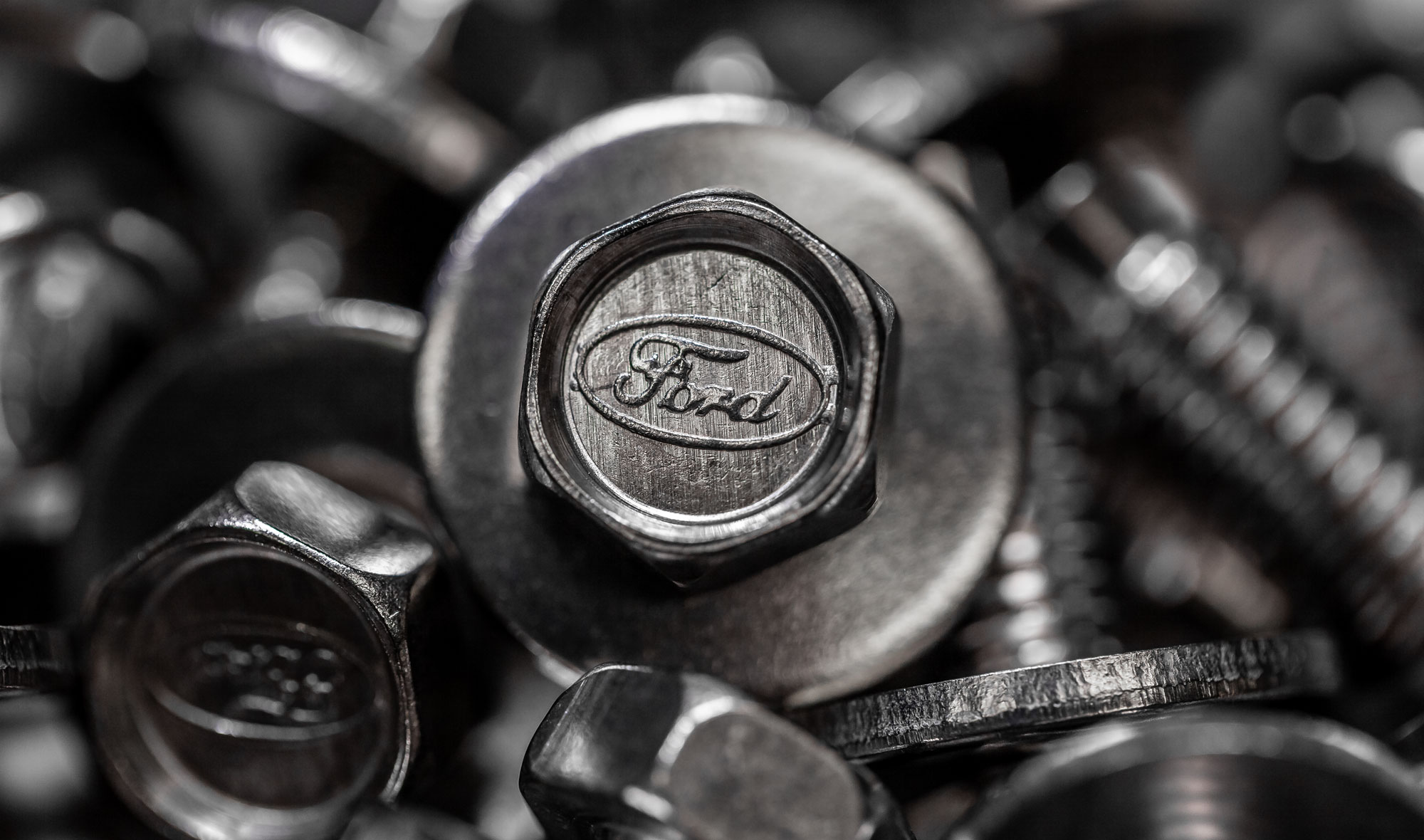 Stainless Bronco Bolt w/Ford Logo